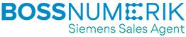 Bossnumerik Logo
